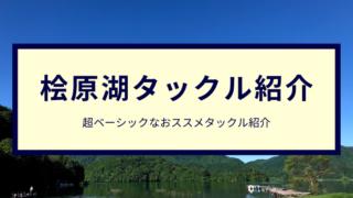桧原湖バス釣のおススメタックル